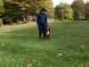 hondsplaz-26-10-08-207